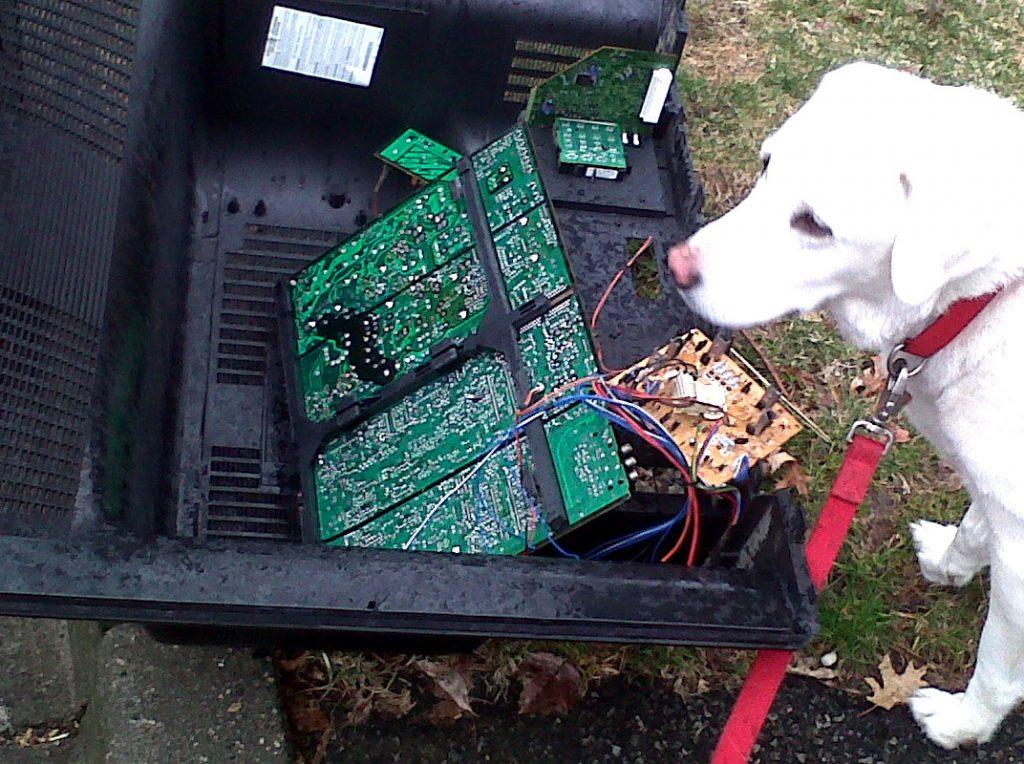 Quase não teve texto porque o cachorro comeu meu computador.